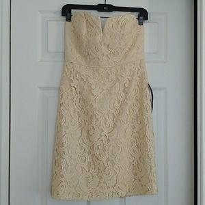 J Crew lace sweetheart neckline dress